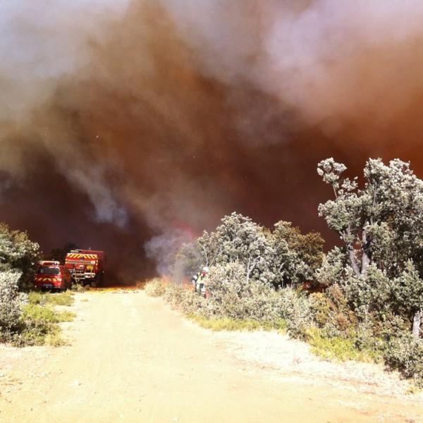 Intervention feu de forêt